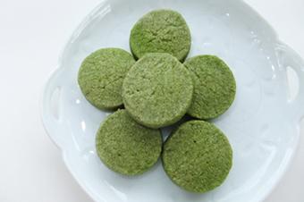 【5日目】一般的な抹茶粉末